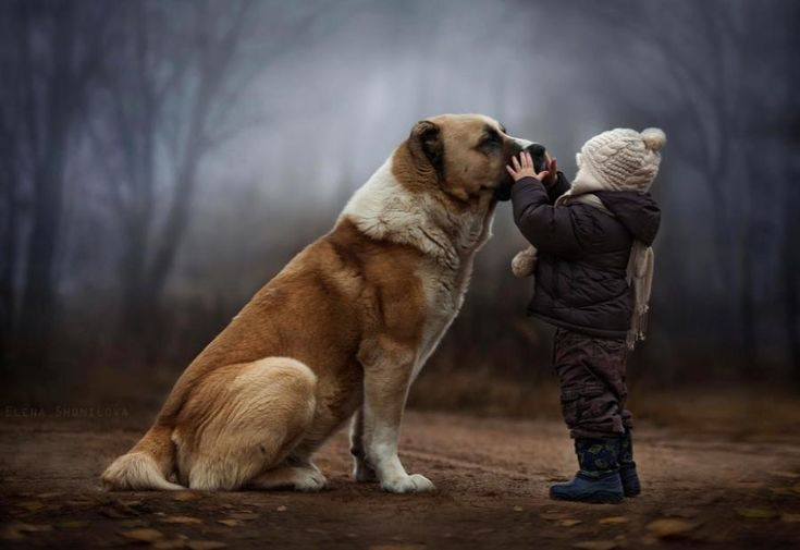 face to face.... photo by Elena Shumilova