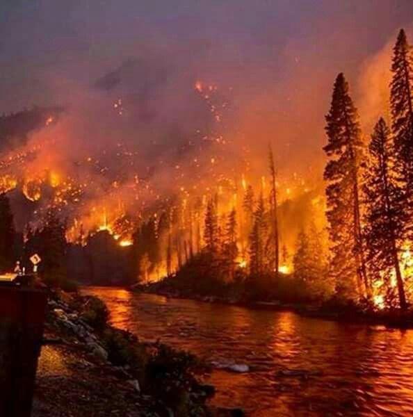 Gatlinburg fire, NOV 2016