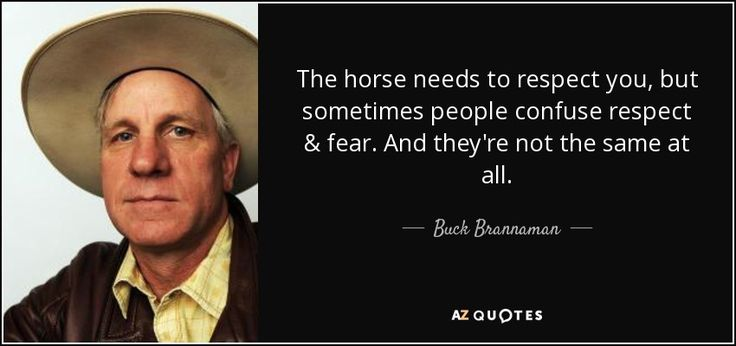 The horse needs to respect you, but sometimes people confuse respect & fear. And they're not the same at all. - Buck Brannaman