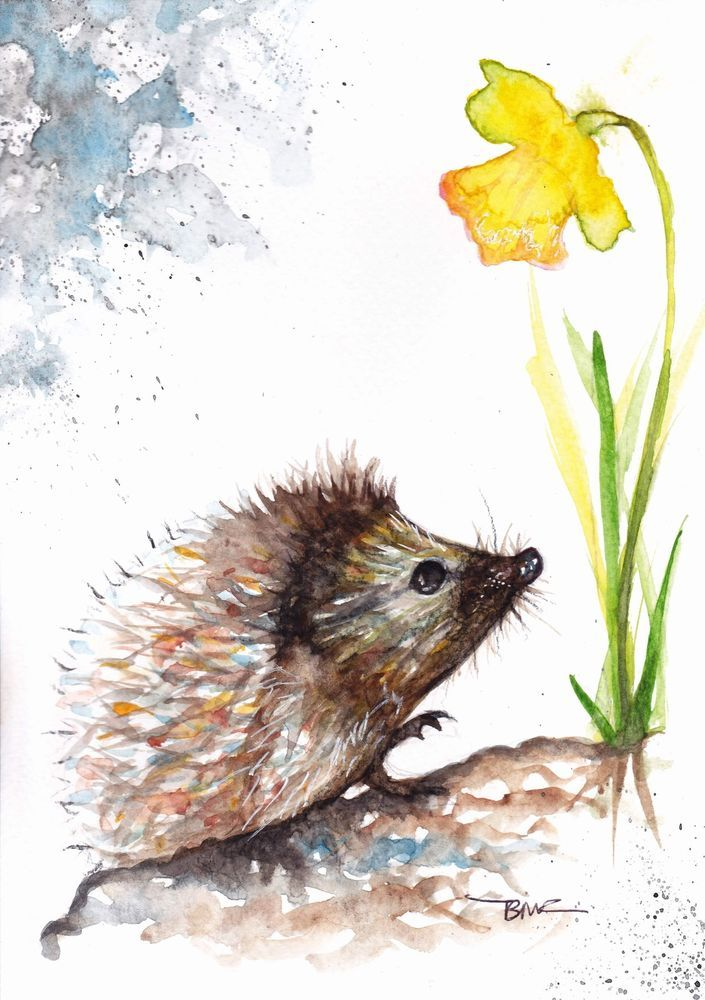 Original Watercolor Painting by Be Coventry,Realism,Hedgehog and Daffodil