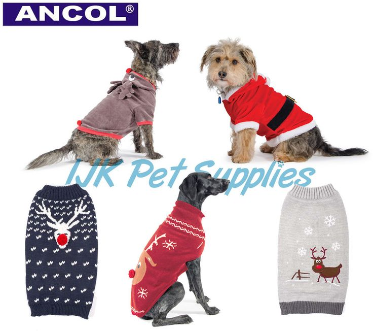 Ancol Christmas Dog Puppy Santa Reindeer suit outfit costume xmas jumper sweater in Pet Supplies, Dog Supplies, Costumes | eBay