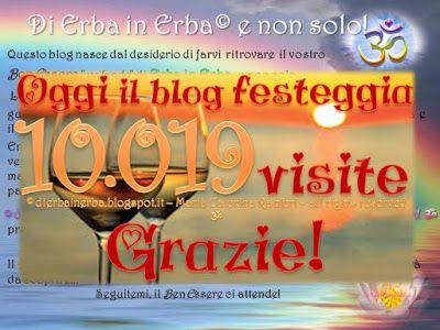 """Il Blog """"Di Erba in Erba"""" 8 mesi dalla sua nascita, Grazie!"""