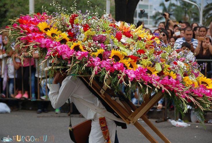 Desfile de silleteros en #Medellín #Colombia. Uno de los desfiles florales más impresionantes del mundo.