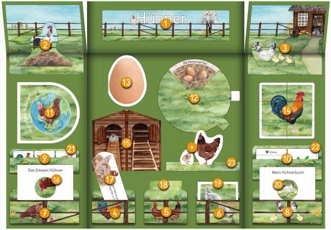 DE-farbe-Huehner-Lapbook-Uebersichtsplan-Eier-Henne-Hahn-Huehnerstall-.jpg