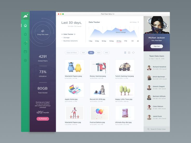 Pied Piper Beta 1 0 Dashboard Uidashboard Designapp