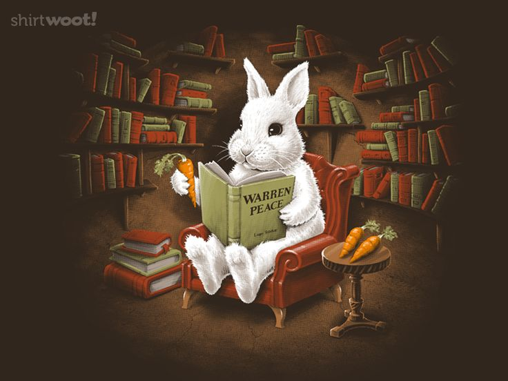 If it's a t-shirt about a bunny, I'll consider it. If it's a t-shirt about reading, I'll likely buy it. But a bunny reading?! Do you even have to ask? A Quiet Place to Read for $12