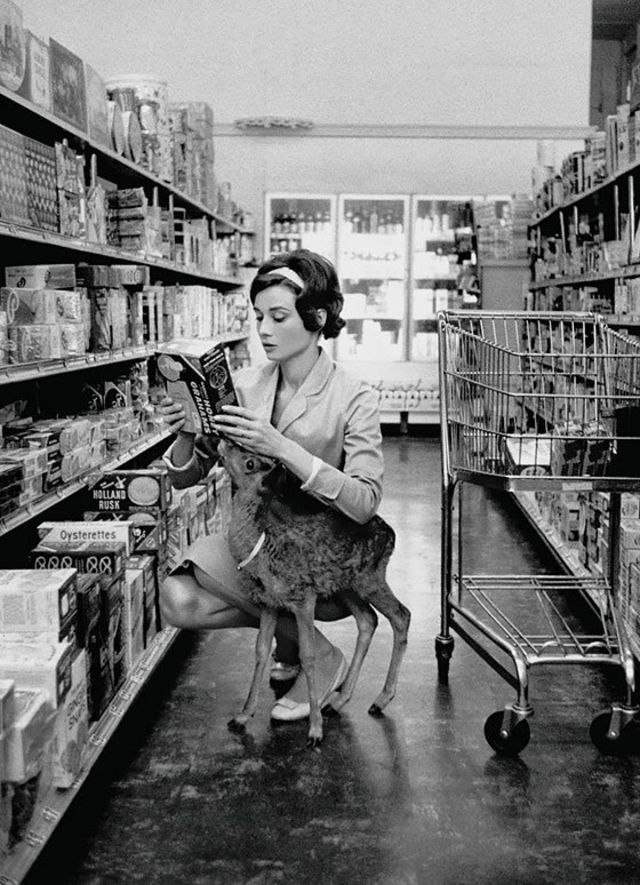 31 Insanely Cool Historical Photos | Audrey Hepburn grocery shopping with her pet deer in Beverly Hills, 1958