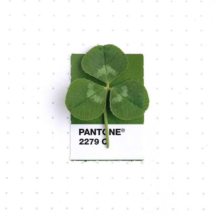 pantone-matching-system-everyday-objects-tiny-pms-project-inka-mathews-houston-texas-1