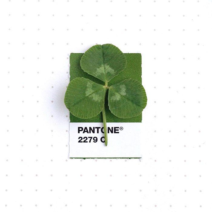 pantone-matching-system-everyday-objects-tiny-pms-project-inka-mathews-houston-texas-1