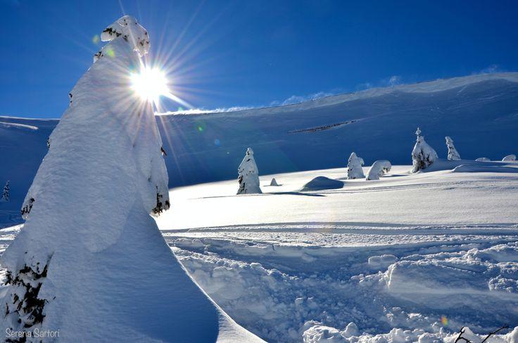 Simply #snow