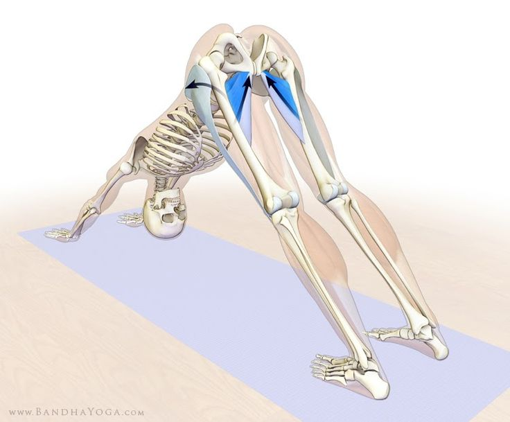 """In our blog post, """" Strong Thigh Muscles Benefit People with Knee Osteoarthritis ,"""" we gave a tip for activating the tensor fascia lata in..."""