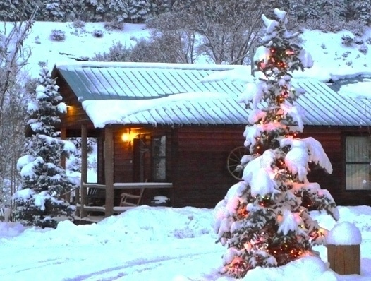 31 best places to visit images on pinterest log cabin for Fireside cabins pagosa