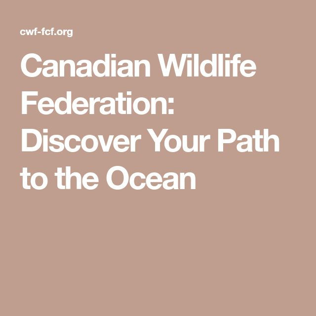 WEBSITE: Canadian Wildlife Federation: Discover Your Path to the Ocean
