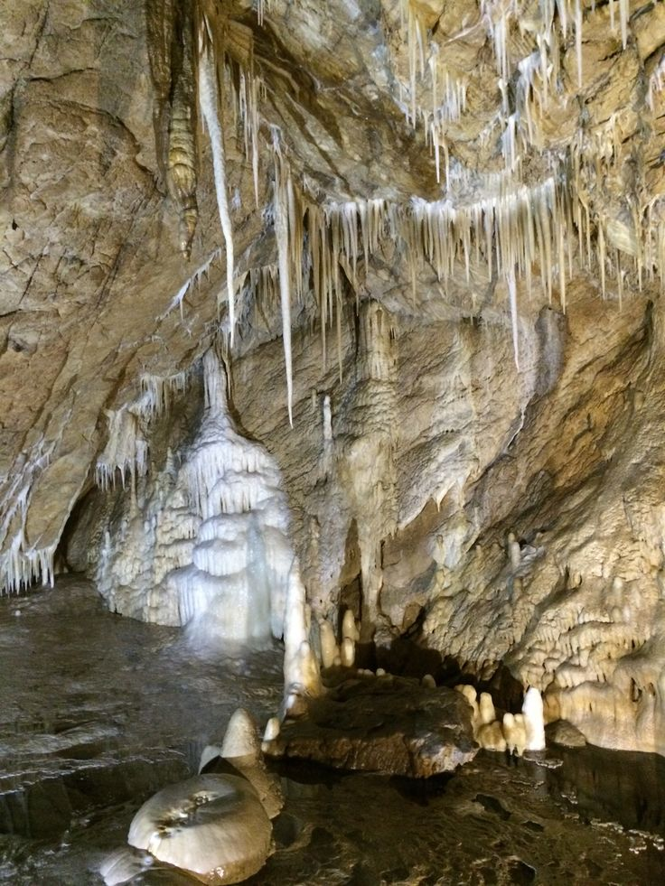 Jaskinia Niedzwiedzia in Kletno, Województwo dolnośląskie