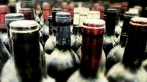 Entre vinos...