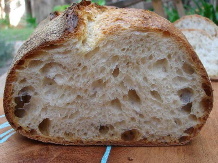 Estação Fraterna Francisco de Assis: Como se faz - Pão com Fermento Natural - Pão Sourdough (Sanfranciscensis Lactobacillus)