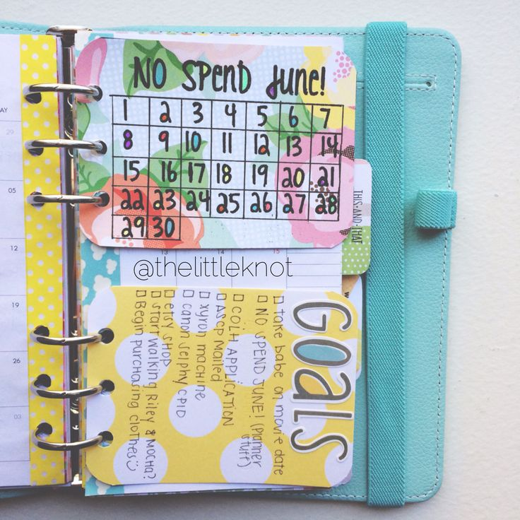No spend June challenge in my planner! And monthly goals