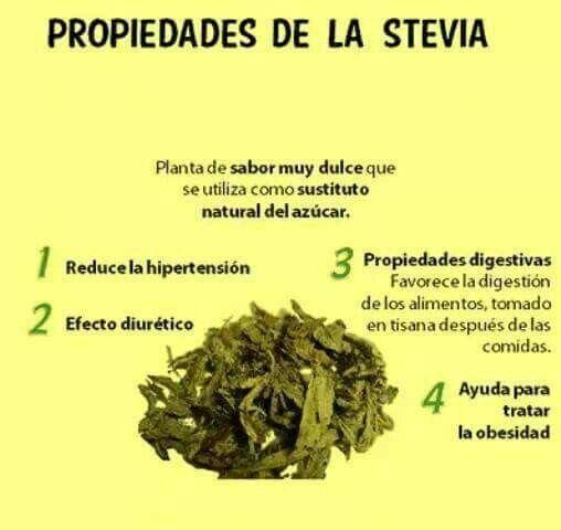 1000+ images about Medicina Natural..plantas/frutos on