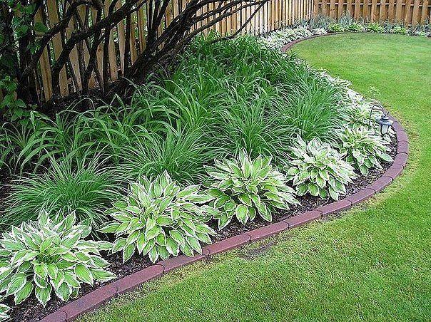 Плавные изгибы, мягкие волны добавят саду изящества и будут всегда радовать своим видом!