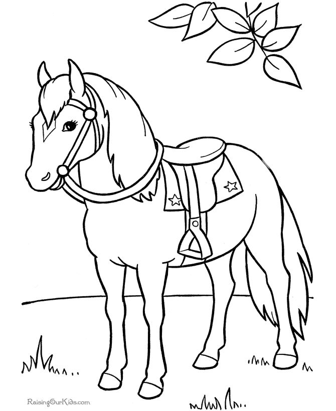 Coloring picture of horse to print