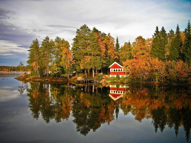 Autumn in Sweden by eikei Umea, Vasterbotten, Sweden