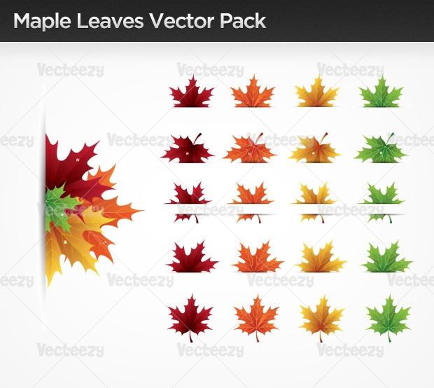 Maple Leaves Vector Pack