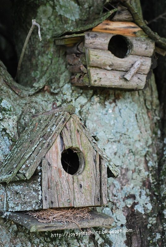Joy's Jots, Shots & Whatnots: Tootie's Birdhouses - love these aged birdhouses!