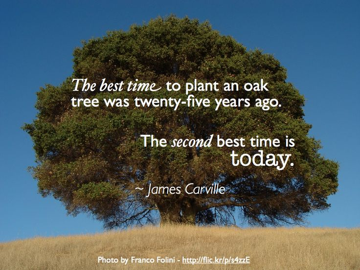 """The best time to plant an oak tree was twenty-five years ago. The second best time is today."" ~ 