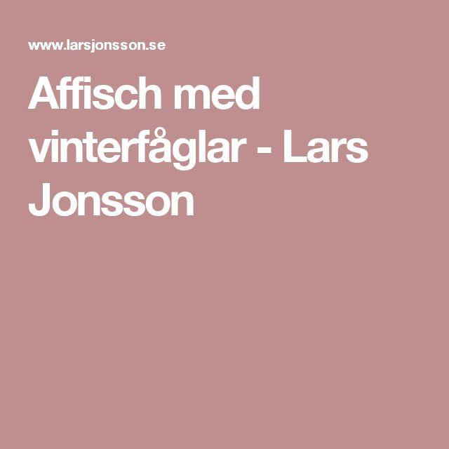 Affisch med vinterfåglar - Lars Jonsson