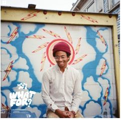FREE Toro Y Moi What For? MP3 Album Download - http://freebiefresh.com/free-toro-y-moi-what-for-mp3-album-download/