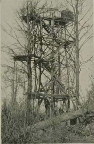 A German observation post captured by the 29th Division in the Bois de Consenvoye.