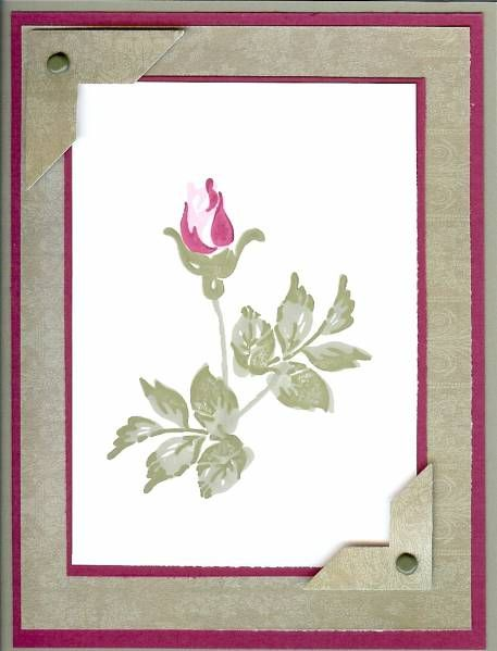 wildrose divorced singles Tags: breakdown, death, disappointment, divorce, forgive, grief,  buy single bach flower essences agrimony mimulus  wild rose larch willow.