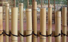 Tropical-Islands, Bambuszäune, Bambusbau, Bambusrohre - Bambusprojekte, Bambusbau, Bambushaus, Bambuskonstruktionen - CONBAM - Spezialist für Bambuskonstruktionen, Bambusrohr und Bambusholz