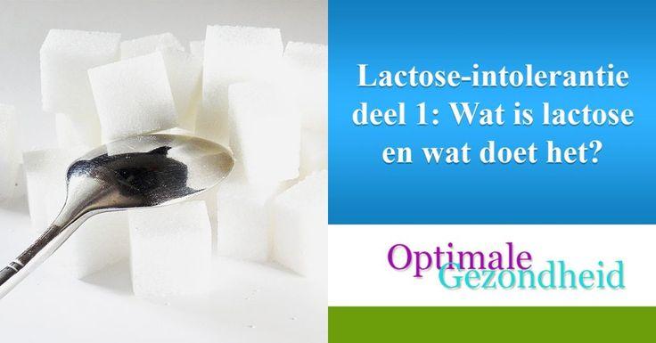 Lactose-intolerantie deel 2: Producten die je wél en niet mag eten :http://www.optimalegezondheid.com/lactose-intolerantie-deel-2-producten-die-je-wel-en-niet-mag-eten/