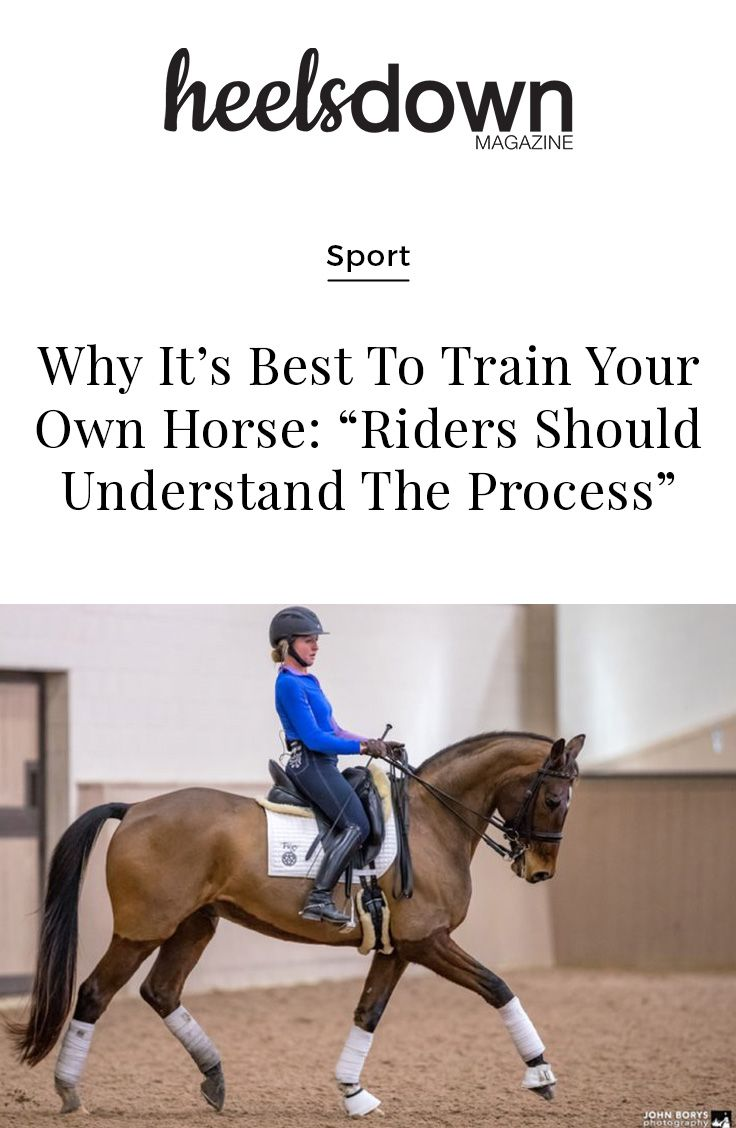 The benefits of training your own horse are endless. As a young professional, I have had the privilege of training horses from green beginnings all the way to FEI. [Read more...]