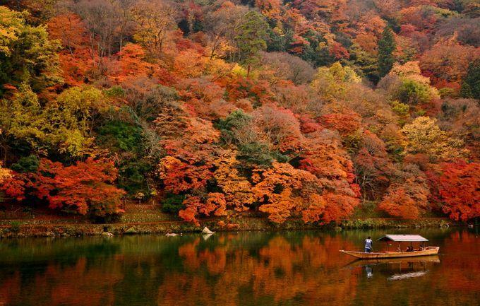 京都の紅葉に感動しに行こう   RETRIP