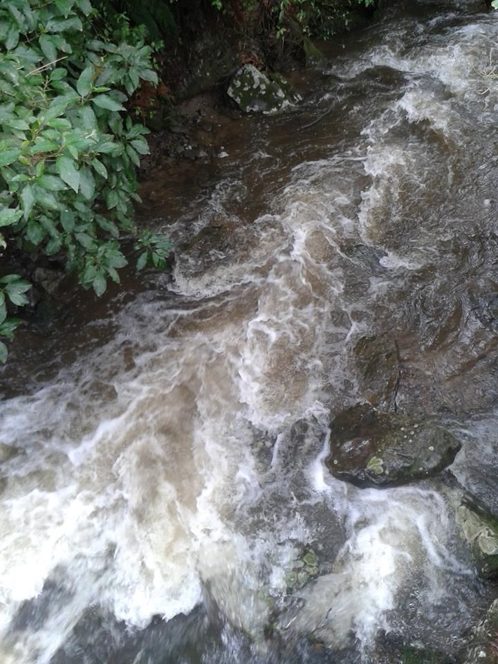 Rain swollen stream at end of Mangaore Road, by J.Rive