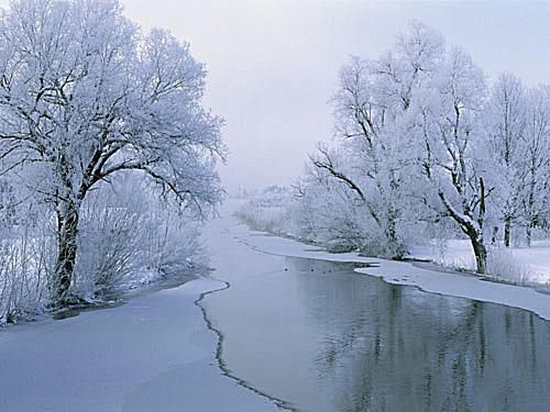 Screenshot of a winter wallpaper of ice covered trees and water