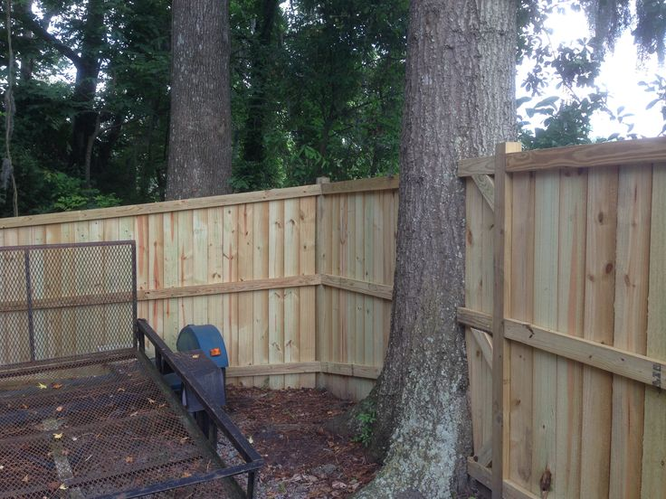 Building A Fence Around Trees Google Search Garden Yard In 2019
