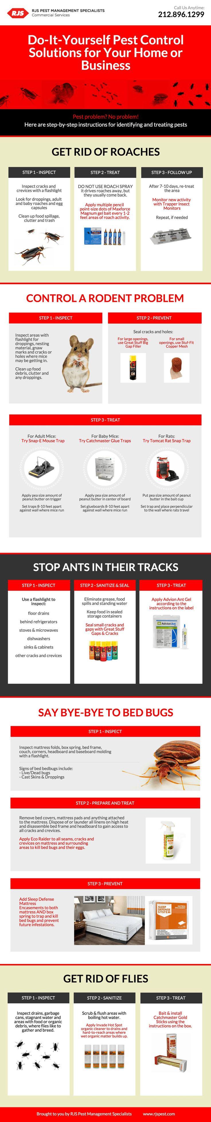 best Pest Control images on Pinterest