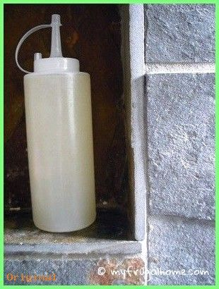 50+ Hautpflege – Hausgemachte Haarspülung Rezept Ein Trägeröl (Kokos, Jojoba,…