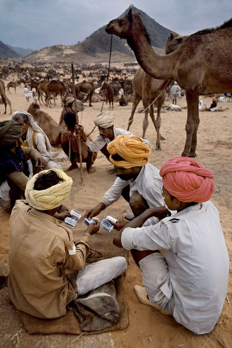 Steve McCurry, INDIA. Pushkar Camel Fair, Pushkar, Rajasthan, 2007. Men handle money at Pushkar Camel Fair.