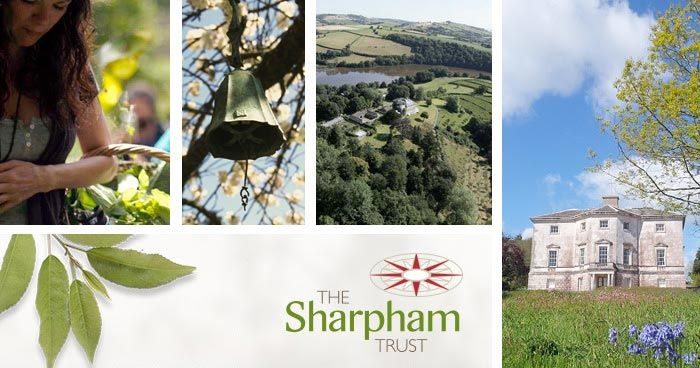 Mindfulness retreats & courses, weddings & outdoor learning