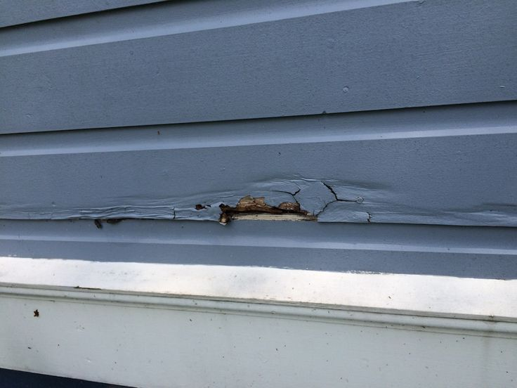 Clapboard Siding Repair 101 – How to Replace That Rotted Siding With Some Good Wood!