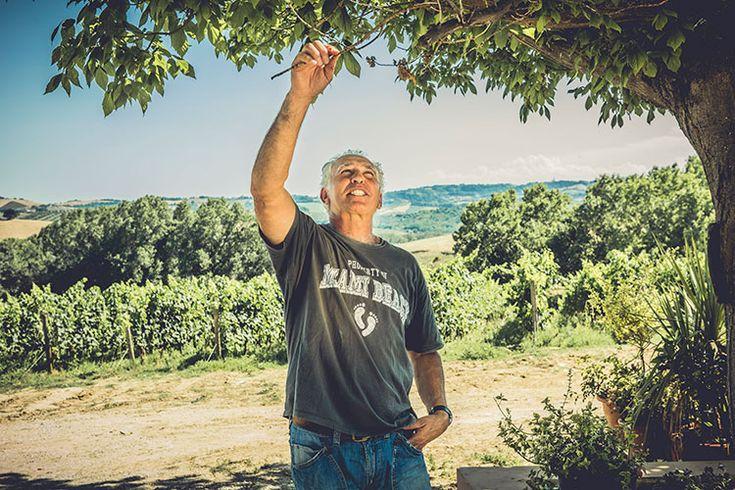 #LuigiValori  una vita dedicata al #vino tra terra #vigna e il passar delle stagioni #abruzzo #chiamamiquandopiove #montepulciano #trebbiano #pecorino #IaT - Il mestiere di raccontare ti dà loccasione di conoscere qualche personaggio. Perché girand... https://t.co/GMPu2LdLEz