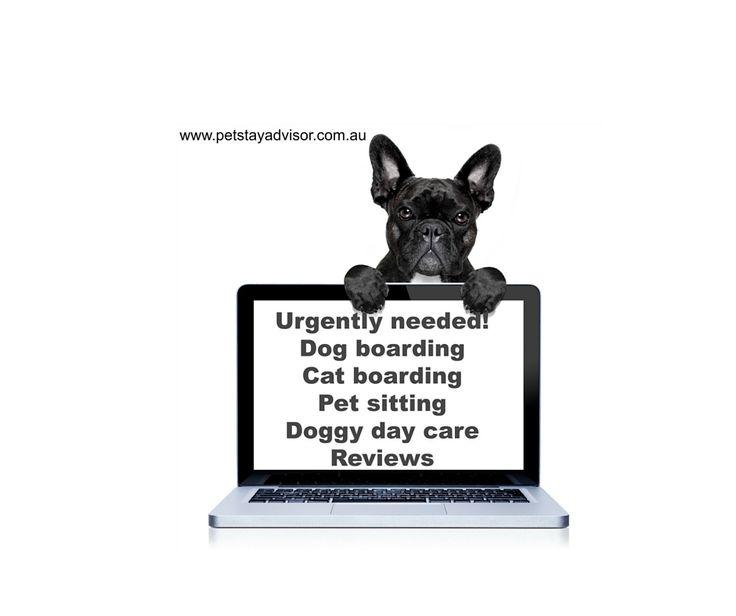 Share the love #thursdaythoughts #dogboarding, #catboarding #petitting #doggydaycare #reviews. #Tripadvisorforpets