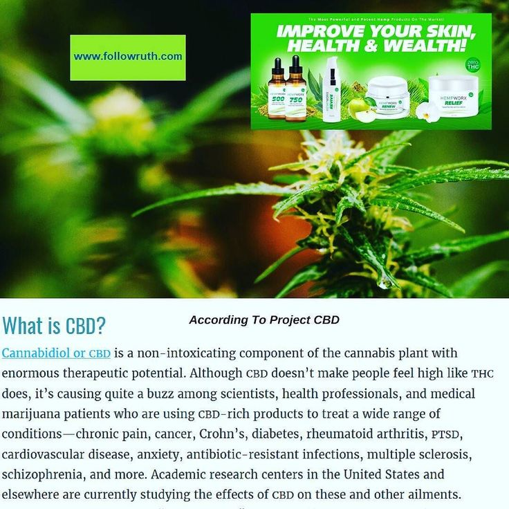 CBD Facts: The Cannabis Extract That Gives No High DM Me for more info   CBD infused PET treats and CBD oil for dogs and Cats!   Order & More Info Here... www.BuyHempworx.INFO  We Are Shipping to over 200 countries!  Sign up as a rep HERE  Take A Free Tour  http://ift.tt/2gnyLSj