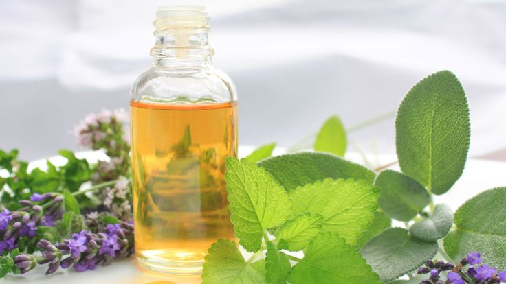 Borage Oil: A Syrian Beauty Export With A Barrage Of Skincare Benefits