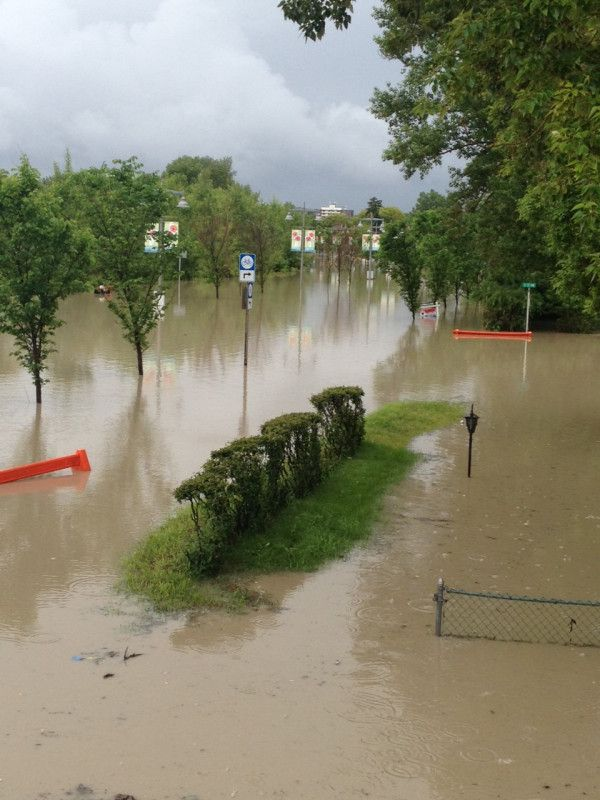 Waist-deep water in #yyc's Sunnyside neighbourhood.