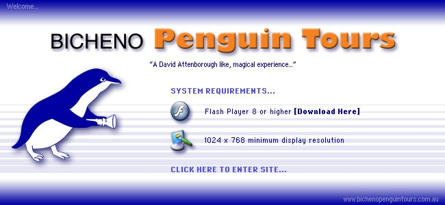 Penguin Tours - Bicheno